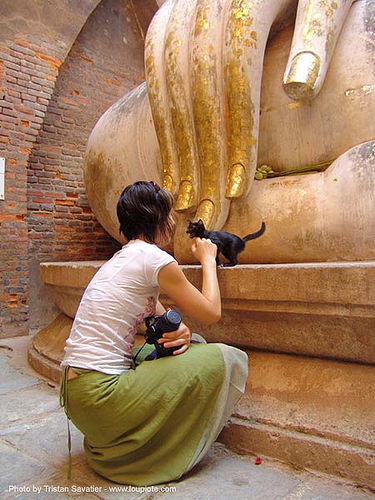 ลูกแมว - พระพุทธรูป - wat si chum - อุทยาน ประวัติศาสตร์ สุโขทัย - เมือง เก่า สุโขทัย - sukhothai - thailand, anke rega, buddha, buddha image, buddha statue, buddhism, buddhist temple, cat, cross-legged, fingers, giant buddha, gilded, golden, hand, kitten, people, sculpture, skinny, woman, ประเทศไทย, พระพุทธรูป, วัดศรีชุม, สุโขทัย, อุทยาน ประวัติศาสตร์ สุโขทัย, เมือง เก่า สุโขทัย