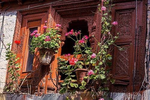 window with flowers - intricate wood carving panels (india), almora, carved, flower pots, flowers, house, india, low relief, window, wood carving, wooden