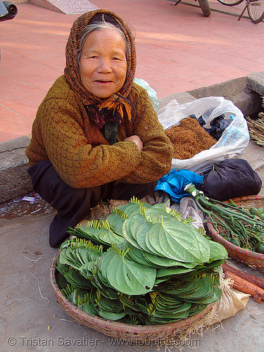 woman selling betel nuts and leaves on the market - vietnam, areca nut, asian woman, betel leaves, betel nut, betel quids, cau, lang sơn, lá trầu, mature woman, merchant, old, street market, vendor