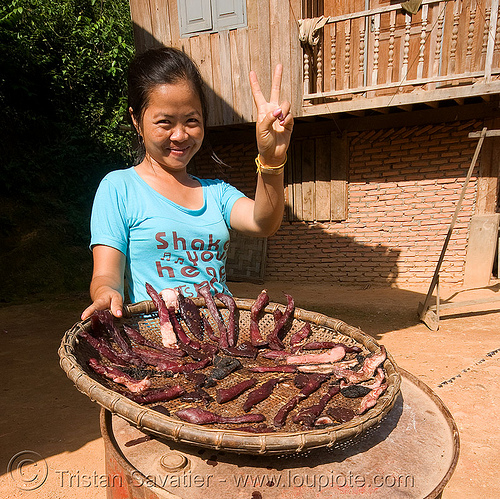 woman selling home-made beef jerky (dried meat) - laos, asian woman, beef jerky, dried meat, dry meat, meat market, meat shop, merchant, peace sign, raw meat, v sign, vendor, water buffalo