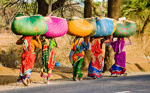 women in sari carrying bags (india), bags, bundles, carrying on the head, colorful, hay, india, lined-up, rajasthan, road, row, sarees, saris, walking, women