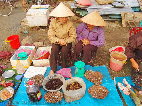 women selling bees and wasps on the market - vietnam, beehives, bugs, cao bang, cao bằng, eating bugs, eating insects, edible bugs, edible insects, entomophagy, food, merchant, people, stall, street market, vendor