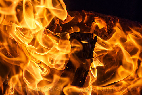 wood fire - flames - fire pit burning, bonfire, burning, fire pit, flames, night, patterns, wood fire