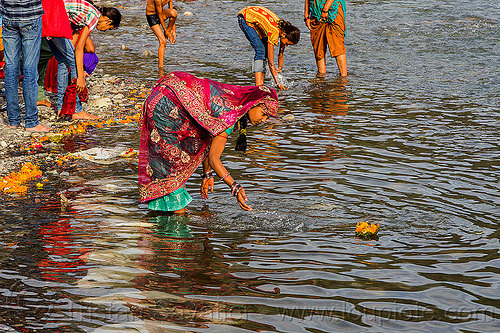 young indian woman making an offering on the ganges river - triveni ghat (india), floating, ganga, ganges river, ghats, hinduism, holy bath, holy dip, india, nadi bath, offering, rishikesh, river bathing, saree, sari, triveni ghat, woman