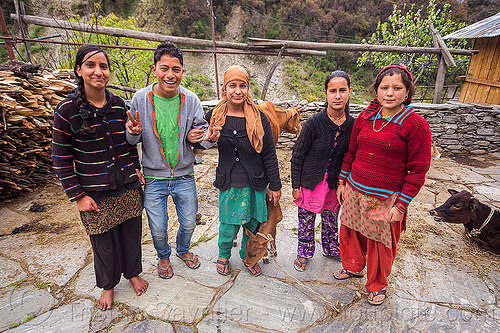 young villagers in the himalayas (india), calf, cows, india, janki chatti, man, standing, women