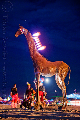 zarafa - burning giraffe sculpture - burning man 2009, art installation, burning giraffe, burning man, eric ringsby, fire, flames, night, sculpture, zarafa