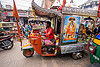 motor rickshaw transporting holy cows (india), auto rickshaw, decorated, holy cow, sai baba, street, traffic, varanasi