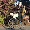 english man on velocipede (san francisco), bicycle, bike, british, colonial helmet, english man, velocipede