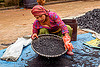 young nepali woman sifting charcoal (nepal), bhaktapur, black, blue, charcoal, coal, gloves, heap, sift, sifting, squatting, tarp, woman