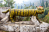 stone tiger at hindu shrine (india), hindu temple, hinduism, sculpture, shrine, statue, stone tiger, west bengal