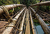 bamboo bridge - mawlynnong (india), bamboo bridge, east khasi hills, footbridge, jungle, mawlynnong, meghalaya, rain forest, river, water