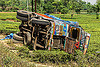 overturned truck in tea plantation (india), crash, ditch, field, lorry, overturned, road, rollover, tata motors, tea plantation, traffic accident, truck accident, west bengal, wreck