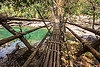 bamboo bridge - east khasi hills (india), bamboo bridge, east khasi hills, footbridge, jungle, mawlynnong, meghalaya, rain forest, river, water
