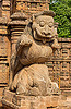 stone tiger over elephant - konark sun temple (india), carving, hindu temple, hinduism, konark sun temple, moustaches, mustache, sculpture, statue, stone elephant, stone tiger