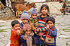 group of little children in himalayan village (india), baby, boys, children, horse, janki chatti, kids, knit cap, little girl, people, toddler, village
