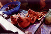pig heads, korea, meat market, meat shop, pig heads, pigs heads, porks, raw meat, seoul, three