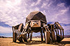 walking pod - giant walking spider robot - burning man 2015, articulated, burning man, legs, machinery, mechanical spider, metal, motorized spider, robot, scott parenteau, walking machine, walking pod art car