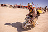 riding unicorn mini motorbike - burning man 2015, art, burning man, mini moto, mini motorbike, motorcycle, riding, unicorn