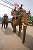 elephant riding - vang vieng (laos)