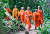 buddhist monks - luang prabang (laos), bhagwa, buddhism, buddhist monks, children, jungle, kids, kuang si falls, luang prabang, men, novice, orange, park, saffron color