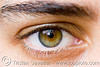 amalia's hazel eye, amalia, close up, eye color, eyelashes, hazel, iris, macro, pupil, right eye, spots, woman