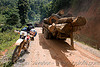logging truck convoy - honda XR 250 (laos), 250cc, convoy, deforestation, dirt road, dual-sport, honda motorcycle, honda xr 250, log truck, logging trucks, lorry, motorbike touring, motorcycle touring, timber, tree logging, tree logs, trees, unpaved, wood