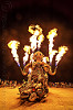 el pulpo mecanico - burning man 2016, burning man, el pulpo mecanico, fire, flames, metal, night, octopus art car, sculpture, steampunk octopus