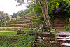 terraces and stair - wat phu champasak (laos)