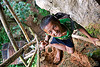kid on bamboo ladder to cliff cave near vang vieng (laos), bamboo ladder, boy, caving, child, cliff, guide, kid, natural cave, peace sign, spelunking, v-sign, vang vieng