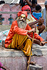 sadhu (hindu holy man) - orchha (india)