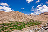 terrace fields, upper chemrey valley - road to pangong lake - ladakh (india)