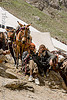 porters and their ponies - amarnath yatra (pilgrimage) - kashmir