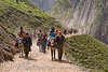 ponies and pilgrims on the trail - yatra - pilgrimage to amarnath cave - kashmir