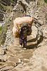 porter with heavy bag on trail - amarnath yatra (pilgrimage) - kashmir