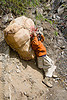 porter with large bag on trail - amarnath yatra (pilgrimage) - kashmir