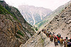 pilgrims on trail - amarnath yatra (pilgrimage) - kashmir
