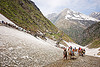 pilgrims on glacier trail - amarnath yatra (pilgrimage) - kashmir