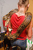pet boa snake - melody and moa the boa