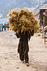 man carrying a ball of hay - amarnath yatra (pilgrimage) - kashmir