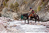 horse riding across creek (argentina), fording, horse-riding, horseback riding, iruya, man, noroeste argentino, pony, quebrada de humahuaca, river bed, river crossing, san isidro, trail, water