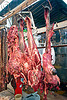 beef head, beef, butcher, cow head, hanging, meat market, meat shop, mercado central, noroeste argentino, raw meat, salta, snouts