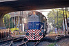 ALCO RSD-16 diesel electric locomotive (palermo, buenos aires), alco rsd-16, american locomotive company, b-802, buenos aires, commuter train, diesel electric, linea san martín, lsm, línea san martín, railroad crossing, railway, train engine, under bridge