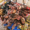 pig fetuses - witch market - la paz (bolivia), babies, dead, dried, dry, fetus, gruesome, la paz, macabre, morbid, mummified, offerings, pigs, porks, shop, street market, witch market