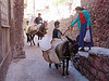 fruit vendors on donkey and horse, asinus, donkey, equus, fruit vendors, horse riding, horseback riding, kurdistan, man, mardin, pack animals, pack horses, street, trading, working animals