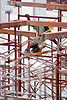 shoring scaffolding, building construction, construction site, construction workers, lumber, man, miri, safety helmet, shoring, timber