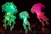 glowing jellyfishes - billion jelly bloom, billion jelly bloom, bjb, dolores park, glowing, jellyfishes, night, performance art