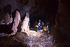 stalagmites - cave formations - caving in mulu (borneo), cave formations, cavers, caving, clearwater cave system, clearwater connection, concretions, gunung mulu national park, natural cave, speleothems, spelunkers, spelunking, stalagmite