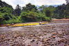 pushing a boat in the shallow waters of the melinau river - mulu (borneo), boatman, boatmen, gunung mulu national park, jungle, melinau river, men, pebbles, plants, rain forest, river bed, river boat, rocks, shallow river, small boat, sungai melinau, trees, water, yellow boat