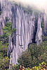 rock blades - mulu pinnacles (borneo)