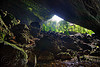 deer cave and garden of eden - mulu (borneo), backlight, cave mouth, caving, deer cave, garden of eden, gunung mulu national park, jungle, natural cave, rain forest, spelunking, trees